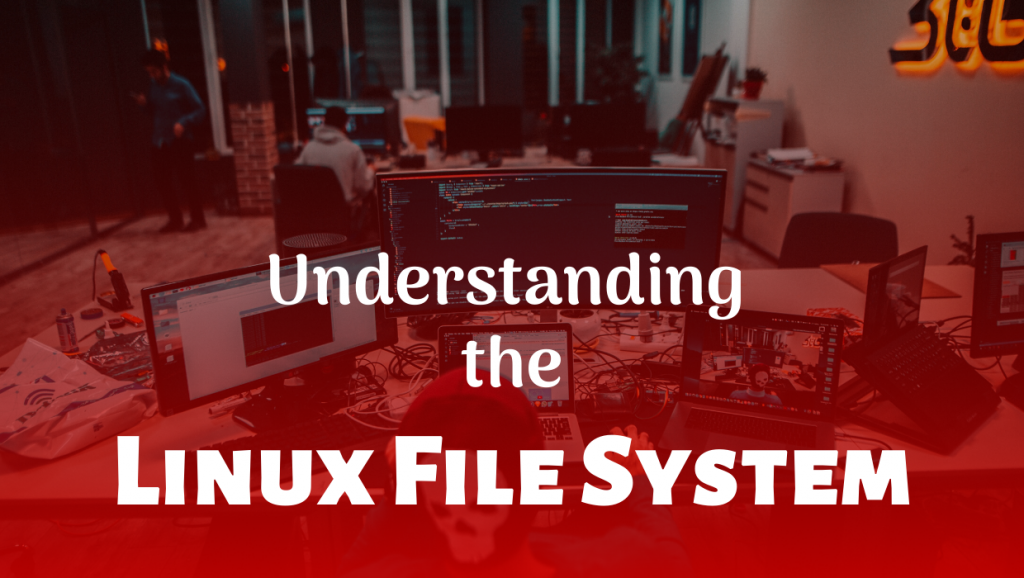 Understanding the Linux File System blog lionguest studios