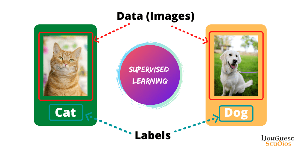 supervised learning types of machine learning lionguest studios